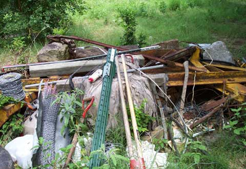 Materials and waste in wooded area, Horizon Environmental Hazardous Material Services